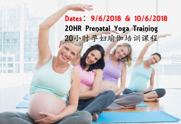 Prenatal Yoga Teaching Training